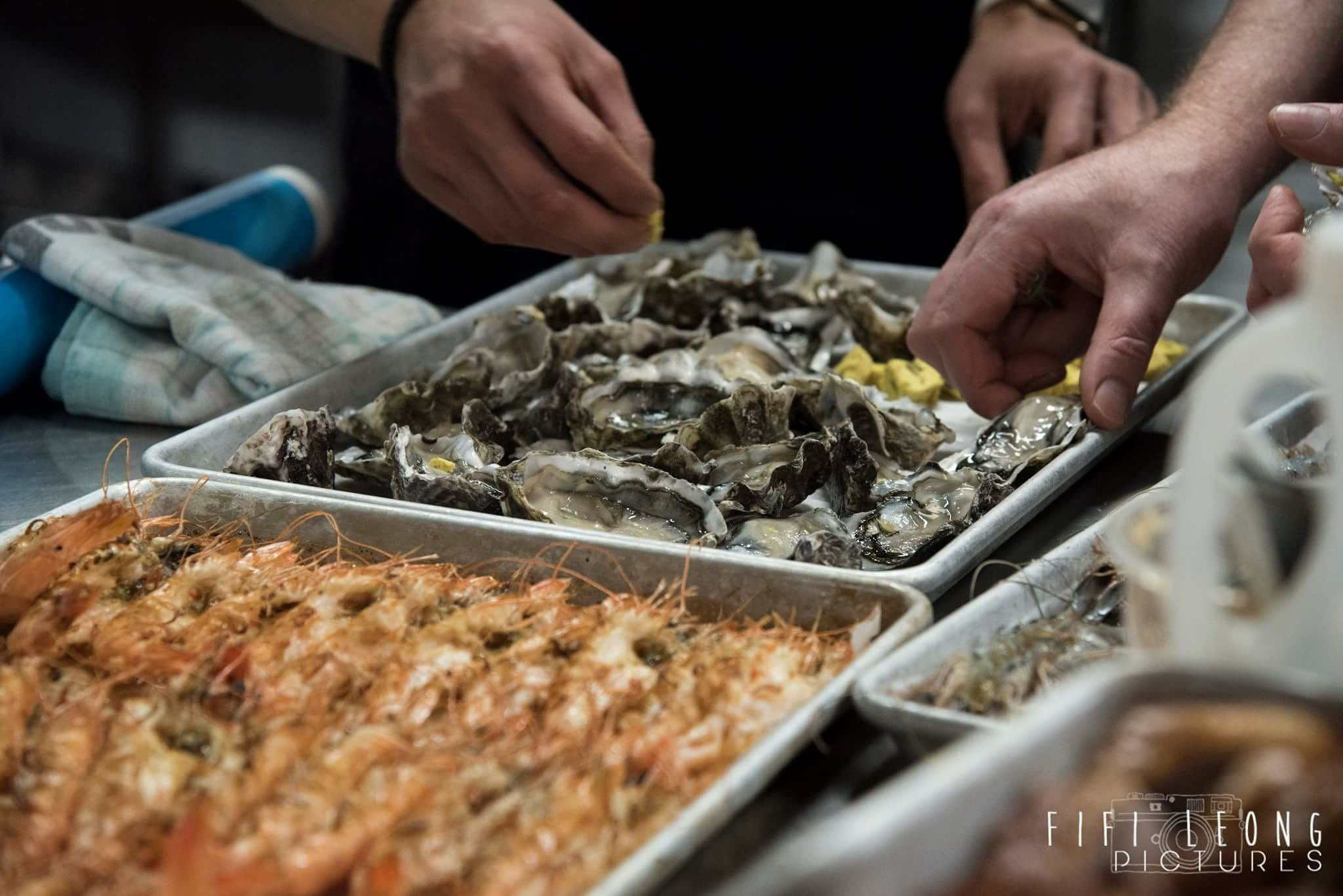 Greg Piner oysters