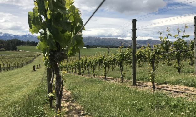 Andrew Donaldson: Akitu Wines – NZ Wine Podcast 31