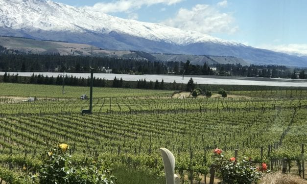 Crawford Brown: Bannock Brae Estate – NZ Wine Podcast 35