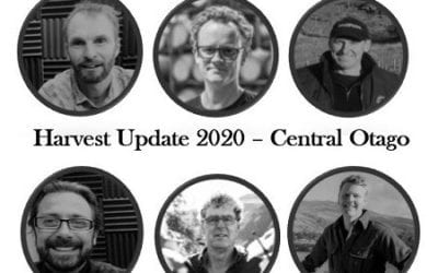 Harvest Update 2020 Central Otago – NZ Wine Podcast 67