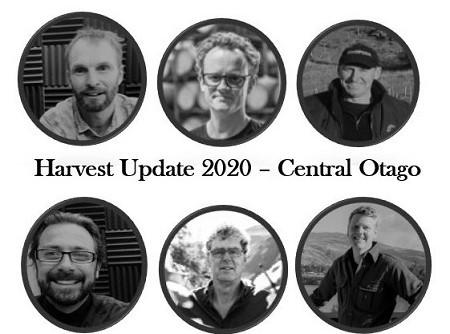 Harvest Update 2020 Central Otago – NZ Wine Podcast 67