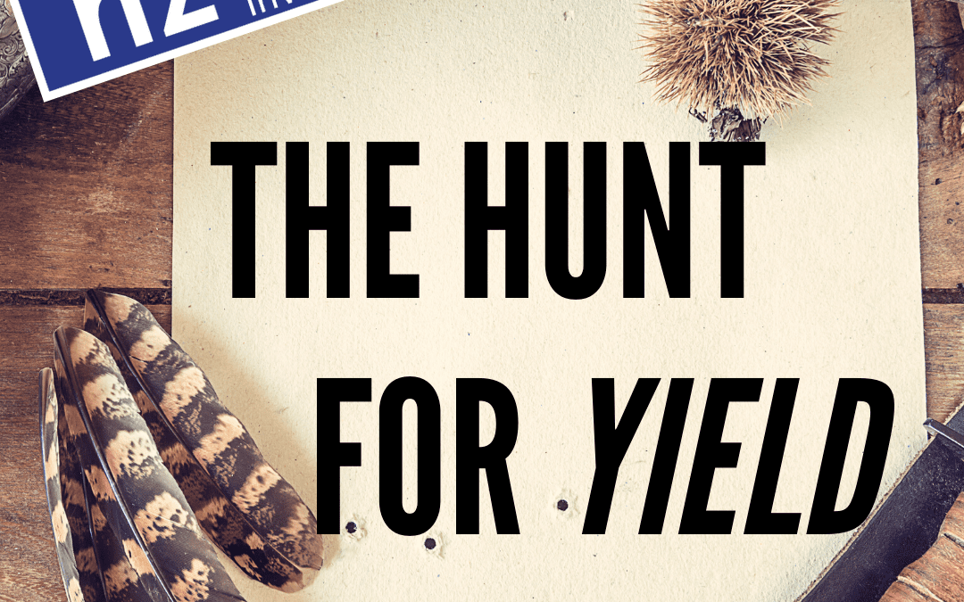 The Hunt for Yield / David Boyle